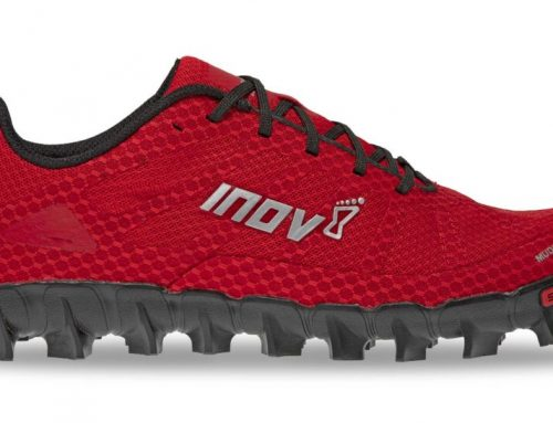 Discovering Trail Running and Finding the Right Shoes