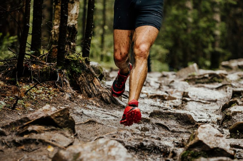 choosing the best trail running shoes