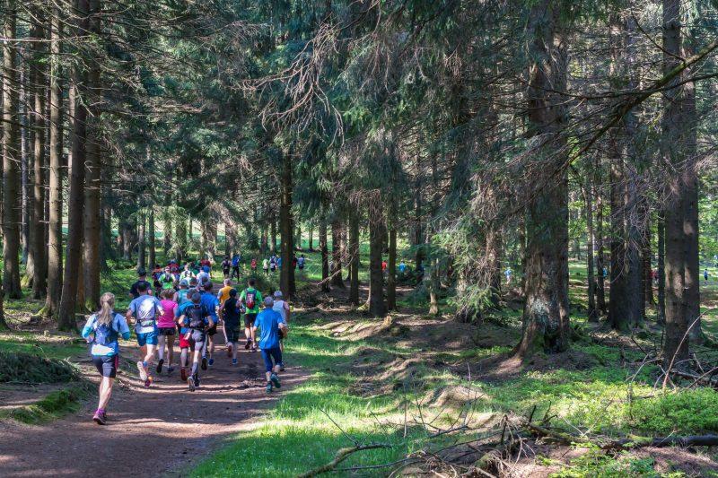 trail and ultramarathon running
